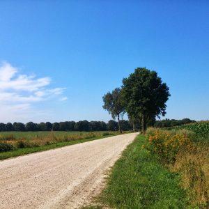 Landweg_2-scaled.jpg